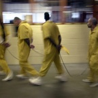 Pelican Bay Prisoners Will Hunger Strike to their Death